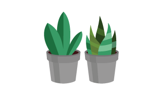 Illustration of couple of green plants in gray flower pots