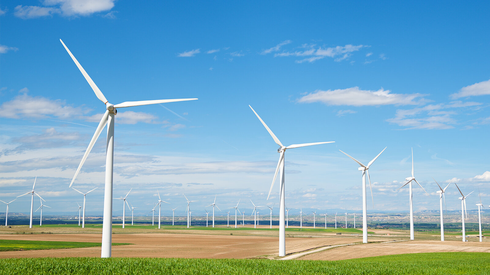 Wind farm with group of wind turbines